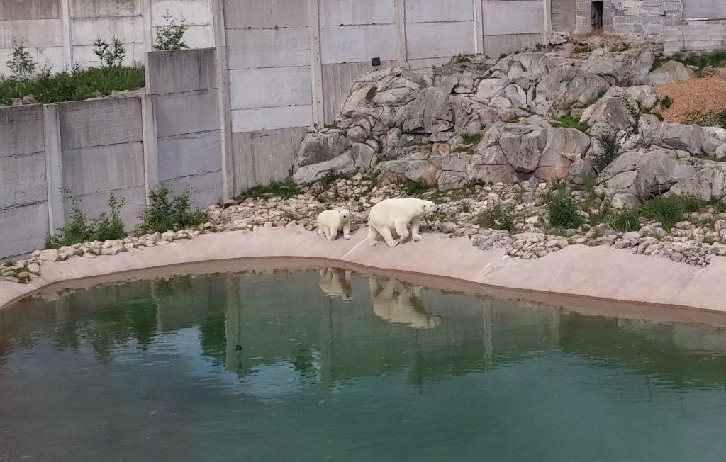 Ranuan eläinpuisto17