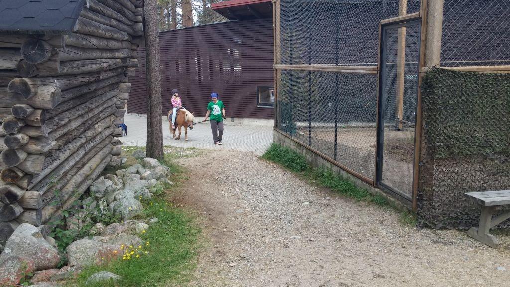 Ranuan eläinpuisto28